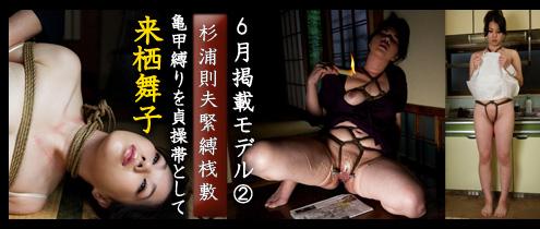 495_210_model