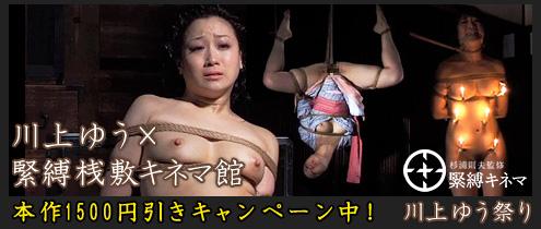banner495×210_kinema